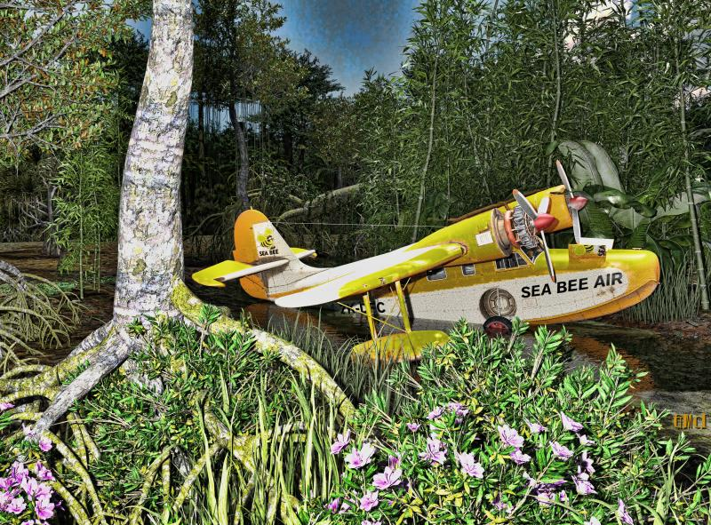 Grumman Goose in the Jungle